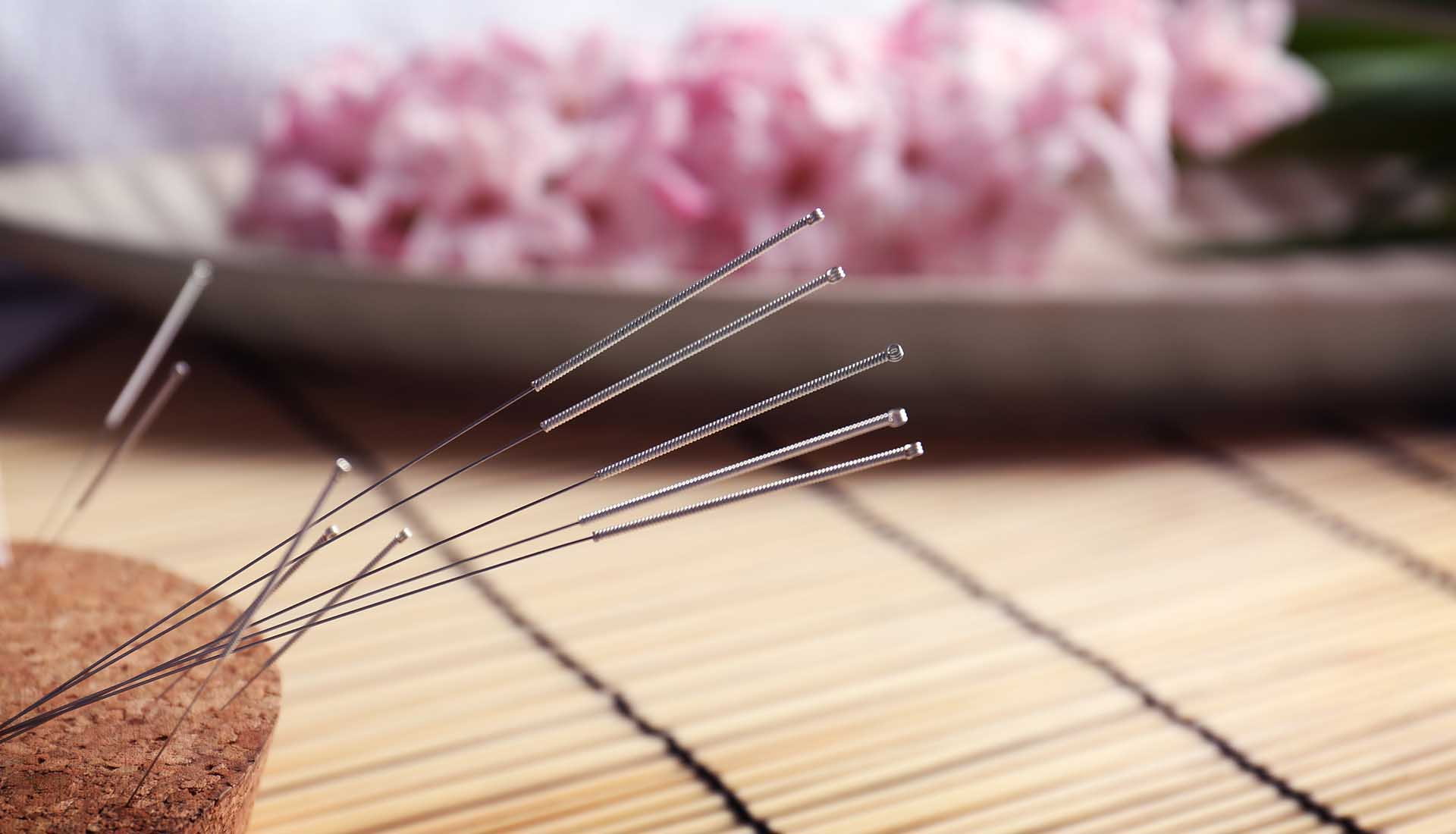 Acupuncture needles inserted into cork.